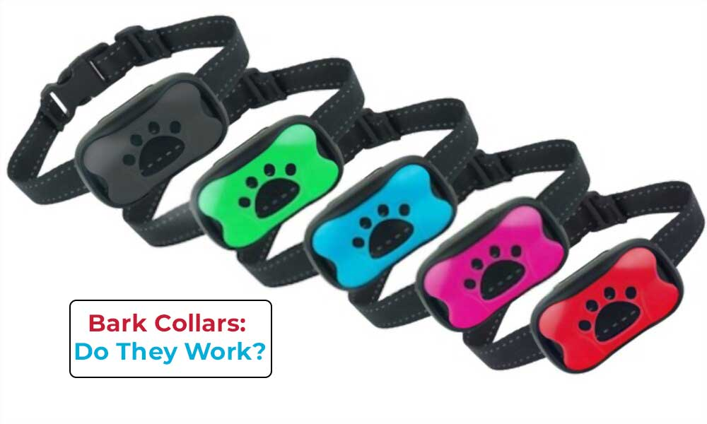 are bark collars cruel