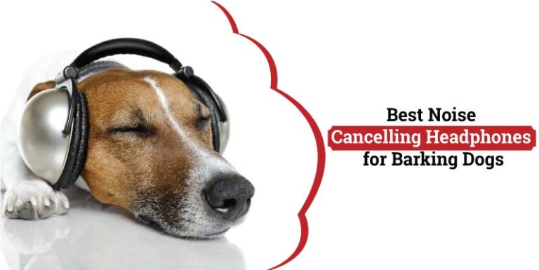 Best-Noise-cancelling-headphones-for-barking-dogs